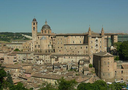 <font color=#662483>Urbino</font>